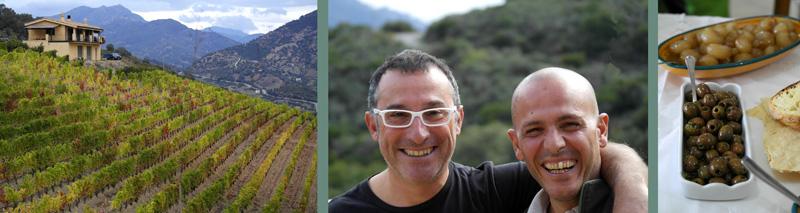Moreno vineyard