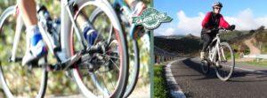 Cyclist Vs Turist Cyclist