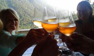 Brindisi with wine